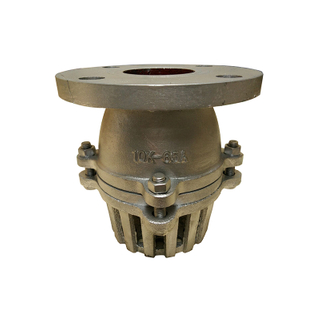 Foot Valve JIS10K Flange Cast Iron