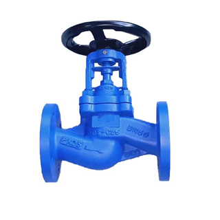 Bellow Seal Globe Valve Cast Steel PN16