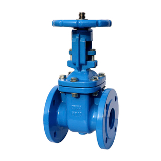 BS5163 Cast Iron Rising Stem Industrial Gate Valve
