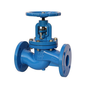 What are the main points of Globe Valve installation?