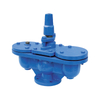 Air Valve Flange Double Ball Cast Iron Pn16