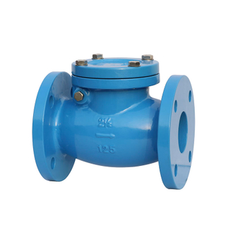 Swing Check Valve ANSI 125LB Cast Iron