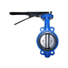 Wafer Butterfly Valve Cast Iron Pn16 without Pin