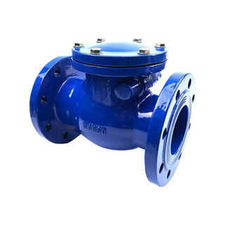 Swing Check Valve BS5153 Cast Iron Pn16